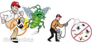 شركات مكافحة الحشرات بالرياض